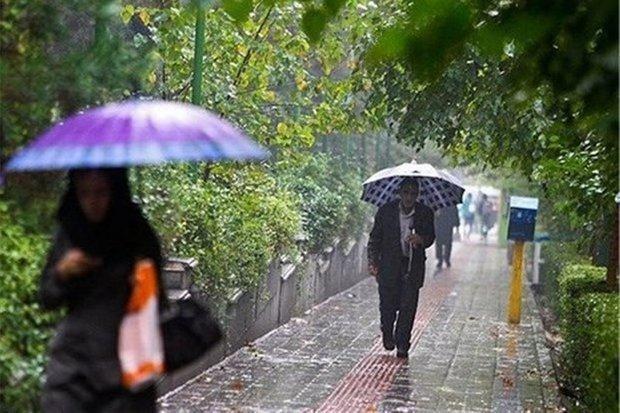 بارندگی و وزش باد در کرمانشاه، احتمال آبگرفتگی معابر