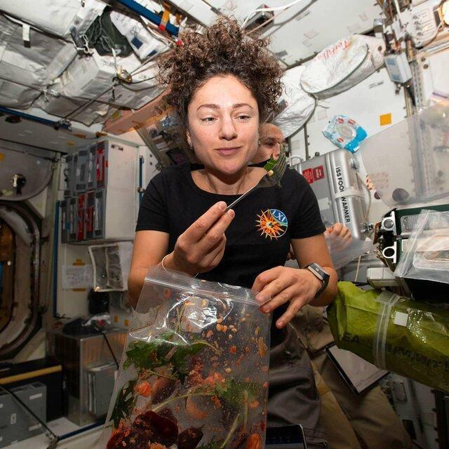 کشاورزی در ایستگاه فضایی بین المللی (