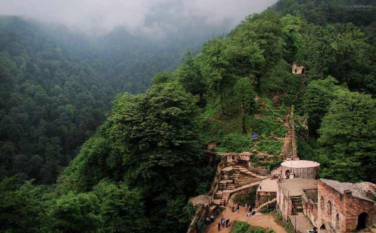 معرفی جنگل های ایران به همراه تصویر