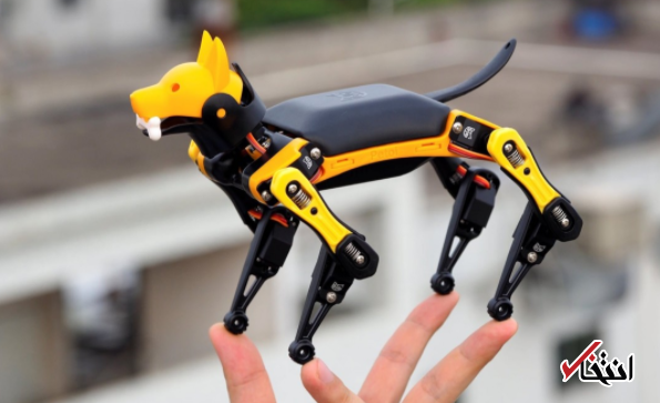 سگ رباتیکی که همزمان بازی می نماید و آموزش می دهد
