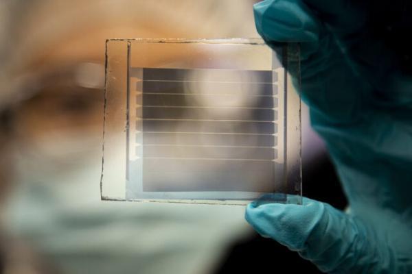 سلول های خورشیدی شفاف با طول عمر 30 ساله!